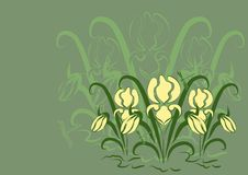 Background with ornament of irises Stock Photos
