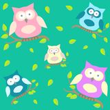 Background with owls  on brunches Royalty Free Stock Photography