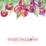 Background with painted cherries. Royalty Free Stock Photo