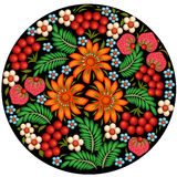 background painted with flowers and berries in a circle Stock Photos
