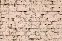 Background painted old brick wall Stock Photos