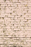 Background painted old brick wall Stock Images