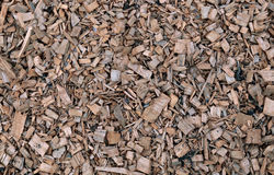 Background of painted wood chips on the soil. In the garden Royalty Free Stock Photo
