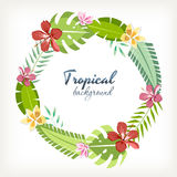 Background palm leaves and tropical flowers Stock Photo