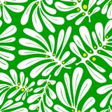 Background with palm leaves. Tropical seamless pattern with mons Stock Photo