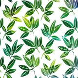 Background with palm leaves Stock Photos
