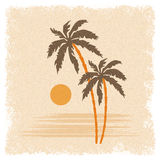 Background with palm trees Royalty Free Stock Photo