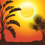 Background with palm trees silhouette at sunset Royalty Free Stock Photo