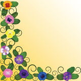 Background with pansies Stock Images