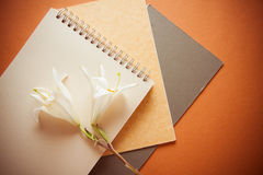 Background of papers and brushes Stock Photography