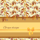 Background with pattern of autumn wild grape branches and bow. Royalty Free Stock Photo