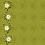 Background/pattern with flowers Royalty Free Stock Image