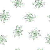 Background pattern with green mint leaves Royalty Free Stock Photo