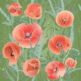 Background Pattern With Red Poppy. Royalty Free Stock Photos