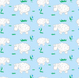 Background pattern with sheep on a meadow Stock Photos