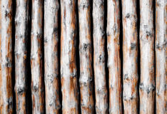 Background pattern from wooden poles. Stock Image