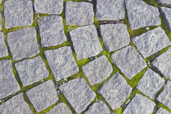 Background of paving stones. Background of paving stone and moss Royalty Free Stock Images