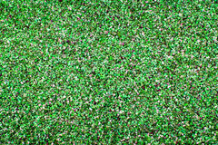 A Background of pea gravel, coloured green. A green tinted gravel background royalty free stock photo
