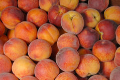 Background of peaches Stock Image