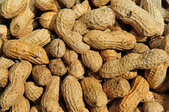 Background peanut. For this photo i used a warm light and grazing to highlight the shape of peanuts or peanuts, the image could be used as background or for any Royalty Free Stock Photo