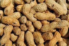 Background peanut Royalty Free Stock Photo