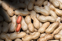 Background with Peanuts - One Shelled Royalty Free Stock Image