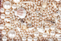 The background of pearls and marsih shells Royalty Free Stock Photo