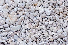 Background from pebble for design Royalty Free Stock Photos