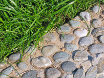 Background of pebble and grass Royalty Free Stock Image