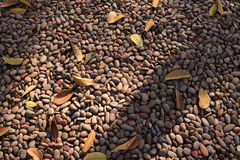 Background pebble stones. Detail of background pebble stones Royalty Free Stock Photo