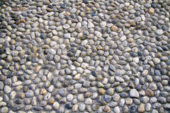 Background of pebbles Royalty Free Stock Photo
