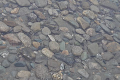 Background of the pebbles on  bottom Royalty Free Stock Image
