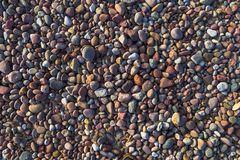 Background pebbles different sizes stony beach Royalty Free Stock Images
