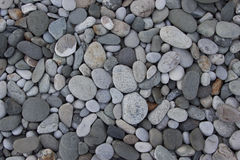 Background from the pebbles Stock Photos