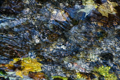 Background of pebbles seen through rippling water. In the sun stock image