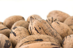 Background of pecan nuts Stock Photography