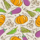 Background with  pepper, eggplant and  pumpkin Royalty Free Stock Photography