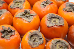 Background from persimmons Royalty Free Stock Photos