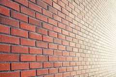 Background with perspective of red brick wall Royalty Free Stock Photo