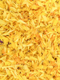 Background of petals Marigold flower Royalty Free Stock Images