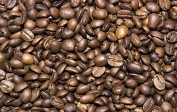 Background of photos spilled roasted Arabica coffee. Close-up shot Royalty Free Stock Images