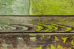The background picture of the old green wooden Board. Texture. Royalty Free Stock Photo
