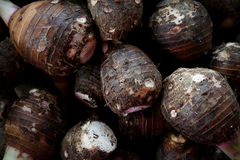 Background of pile of fresh organic taro for retail Stock Images