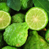 Pile kaffir limes Royalty Free Stock Images