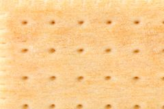 Background of pin hole biscuit. Macro. Stock Photography