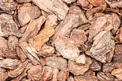 Background of pine bark nuggets layer Stock Photography