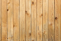 Background from pine boards with knots royalty free stock image