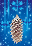 Background with pine cone Stock Images