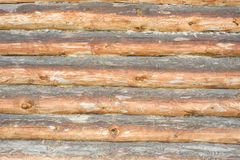 Background of pine logs