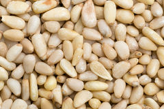 Background of pine nuts Stock Image